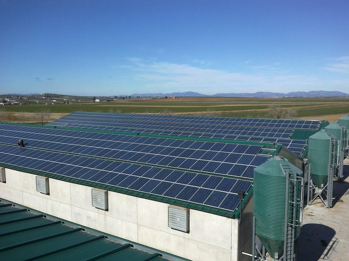Instalación Fotovoltaica de 520,49 kWp para Industria Agroalimentaria (Córdoba)